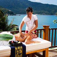 Тайский спа слон и массаж