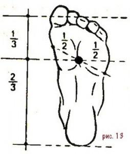 13-distonia